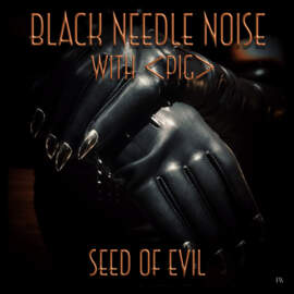 BLACK NEEDLE NOISE Seed of Evil