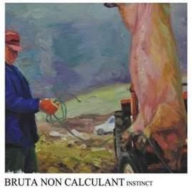 BRUTA NON CALCULANT Instinct