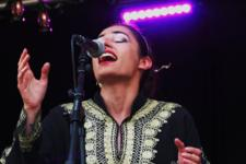03/08/2014 : CASTLEFEST 2014 - Rosa Crvx, The Dolmen, Cesair, Irfan, Folk Noir, The Moon And The Nightspirit
