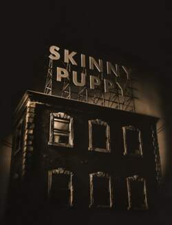 05/12/2020 : CEVIN KEY (SKINNY PUPPY, DOWNLOAD) - 'It really has been like the formation of a new band in a lot of ways...'