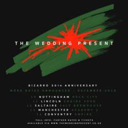 30/04/2020 : DAVID GEDGE (THE WEDDING PRESENT) - 'I do like to make the song as personal as possible!'