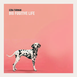 EZRA FURMAN Big Fugitive Life