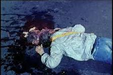 25/08/2014 : MICHAEL HERZ & LLOYD KAUFMAN - The Toxic Avenger