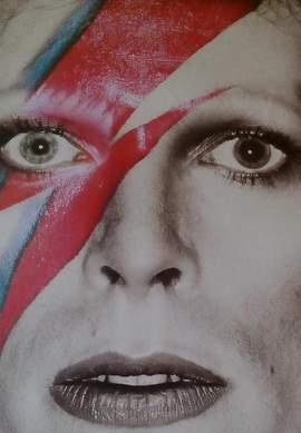 11/01/2016 : DAVID BOWIE - David Bowie Is (Groningen, Groninger Museum, Until/tot 13.3.2016)