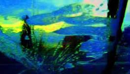 21/10/2014 : JEAN-LUC GODARD - Adieu Au Langage 3D (FilmFest Ghent 2014)