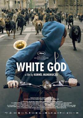 17/05/2015 : KORNEL MUNDRUCZO - White God