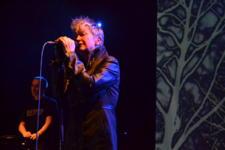 12/04/2014 : ANNE CLARK + HERRB & SIMI NAH - live in Concert at Zappa, 11/04/2014, Antwerp, Belgium
