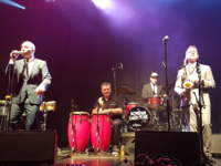 11/12/2016 : MATT BIANCO & NEW COOL COLLECTIVE - Rijmenam, Rijmrock (20/08/2016)