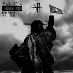 12/10/2019 : NEON INSECT - A Conversation With Neon Insect