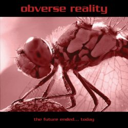 11/11/2012 : OBVERSE REALITY - Reality can be grim.