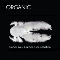 04/01/2013 : ORGANIC - We do not like working with blinders on. That's why our album is hybrid, even surreal, with many different colors.