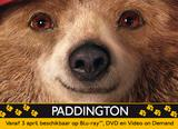 NEWS: Paddington released in both DVD and Blu-ray on Belga