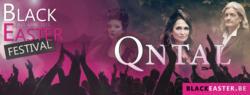 23/02/2015 : QNTAL - QNTAL returns with new energy!