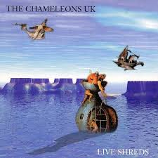 THE CHAMELEONS - Live Shreds