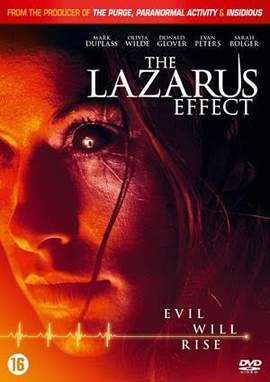 15/07/2015 : DAVID GELB - THE LAZARUS EFFECT