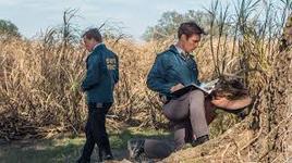 11/06/2014 : NIC PIZZOLATTO - True Detective
