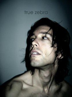 20/12/2011 : TRUE ZEBRA - BUM NUMBER TWO: KEVIN STRAUWEN [TRUE ZEBRA]