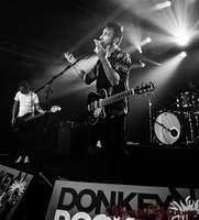 WE ARE WAVES - Donkey Rock Festival Selange