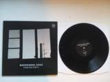 NEWS: Whispering Sons on vinyl and CD
