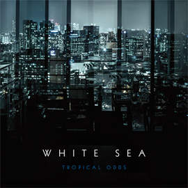 WHITE SEA Tropical Odds