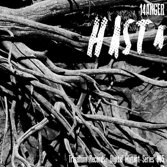 29/04/2015 : 14ANGER - Hasta EP
