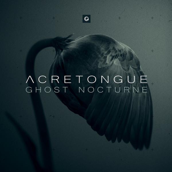 07/08/2019 : ACRETONGUE - Ghost Nocturne