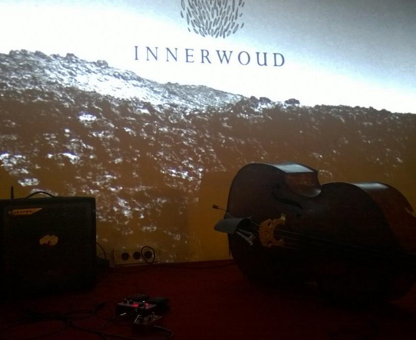 25/01/2016 : INNERWOUD - Antwerpen, De Groene Waterman (22/01/2016)