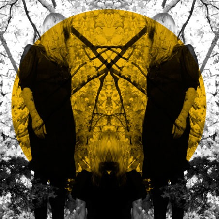 26/06/2011 : AUSTRA - Feel It Break
