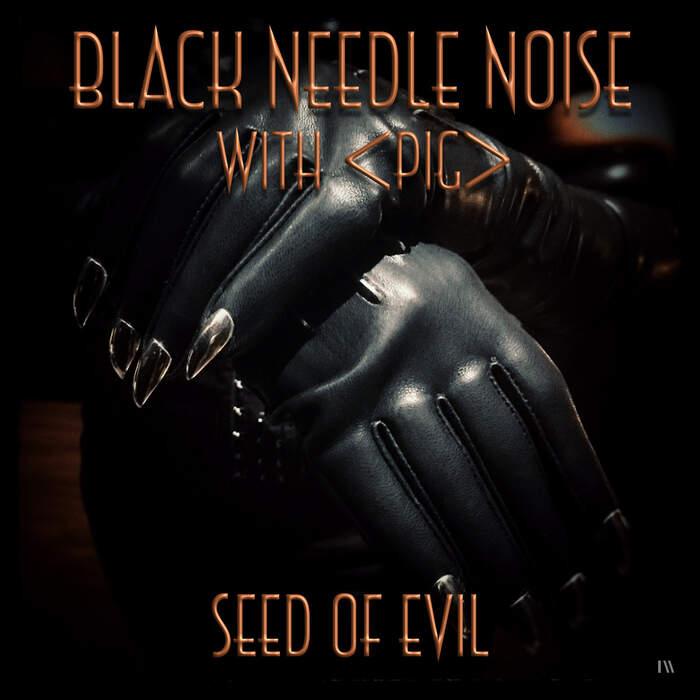 18/06/2020 : BLACK NEEDLE NOISE - Seed of Evil