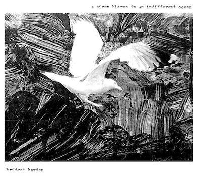 30/10/2011 : BRIDGET HAYDEN - A Siren Blares In An Indifferent Ocean