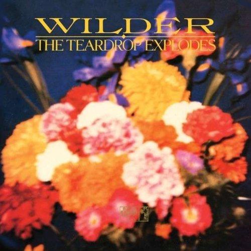 16/11/2014 : TEARDROP EXPLODES - CLASSICS: Wilder
