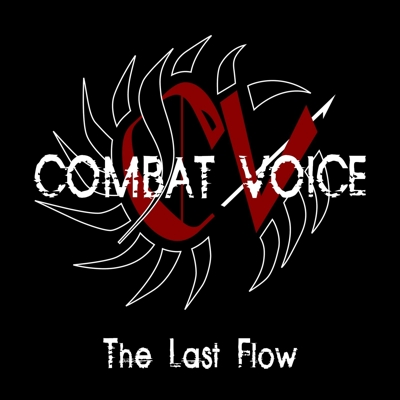 05/06/2011 : COMBAT VOICE - The last flow
