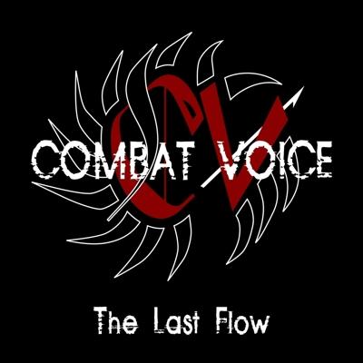 05/06/2011 : COMBAT VOICE - The last flow
