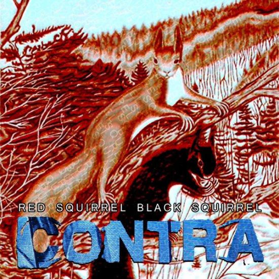 04/07/2012 : CONTRA - Red Squirrel Black Squirrel