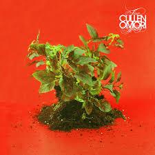 10/12/2016 : CULLEN OMORI - New Misery