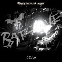 15/07/2011 : HYCOSCYAMUS NIGER - Czas