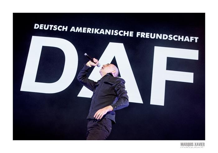 photoshoot D.A.F Sinner's Day, Ethias Arena, Hasselt, Belgium
