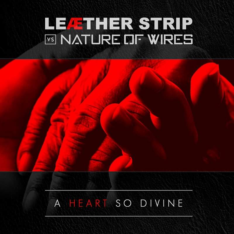 NEWS Danish EBM legend Claus Larsen, aka Leaether Strip and UK synthpop artist Gary Watts, aka Nature of Wires, have collaborated for a very good cause.