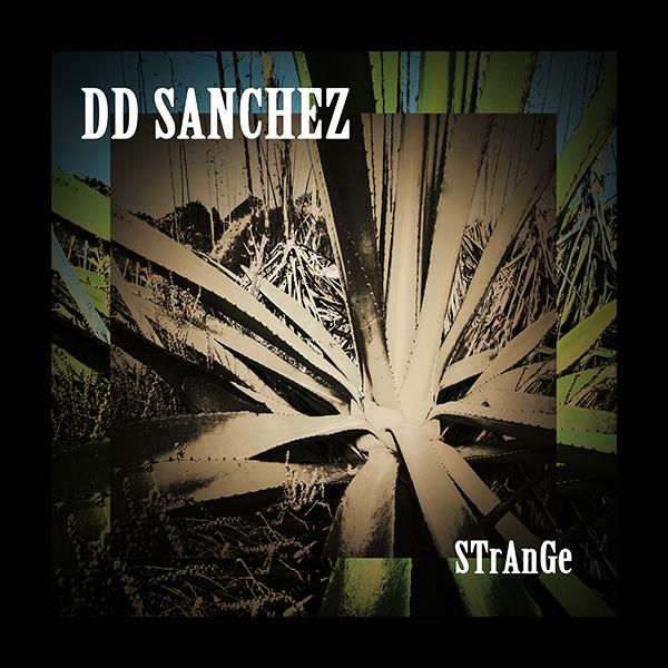 15/01/2021 : DD SANCHEZ - StRaNgE