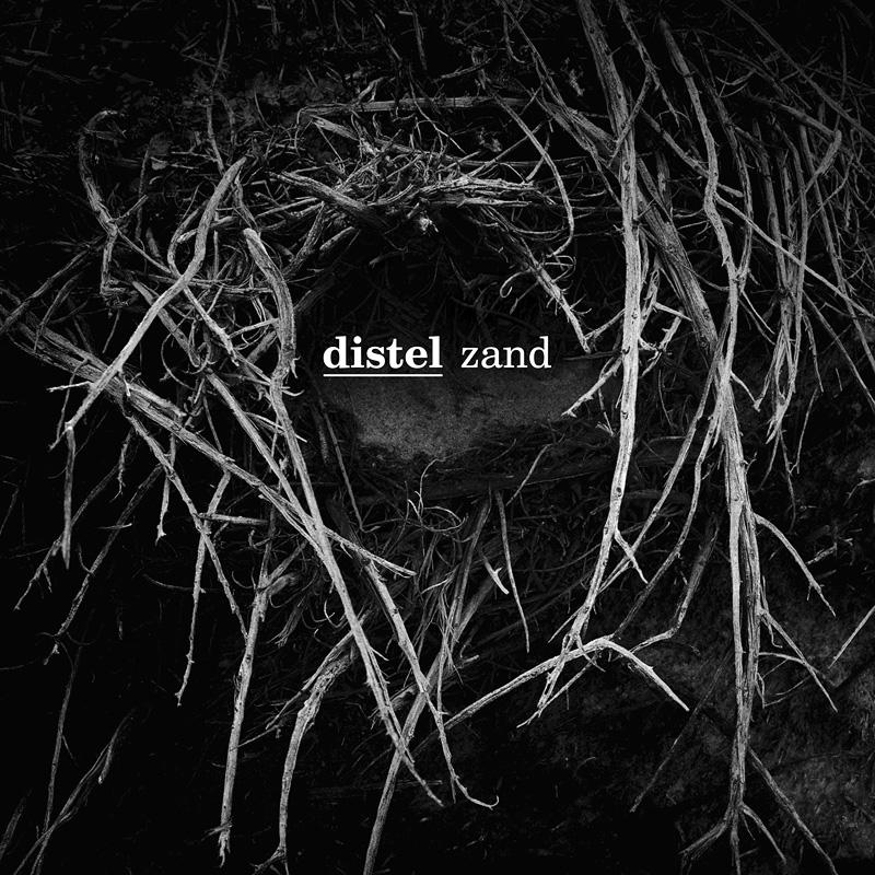 29/11/2015 : DISTEL - Zand