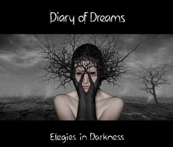28/03/2014 : DIARY OF DREAMS - Elegies in Darkness