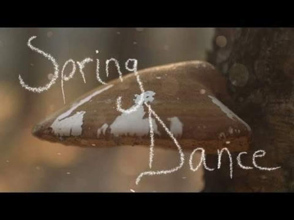 4030 Spring Dance