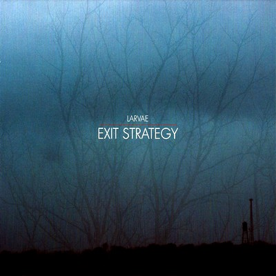 11/07/2012 : LARVAE - Exit Strategy