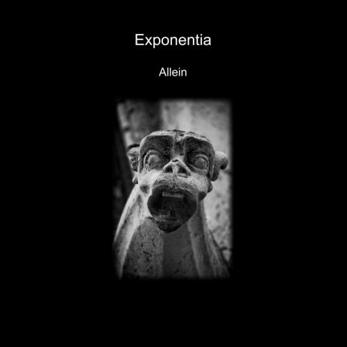 19/11/2012 : EXPONENTIA - Allein