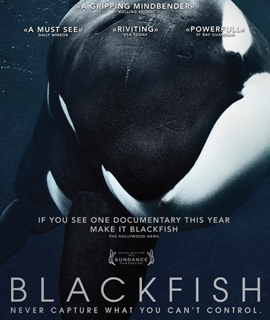 06/01/2014 : GABRIELA COWPERTHWAITE - Blackfish
