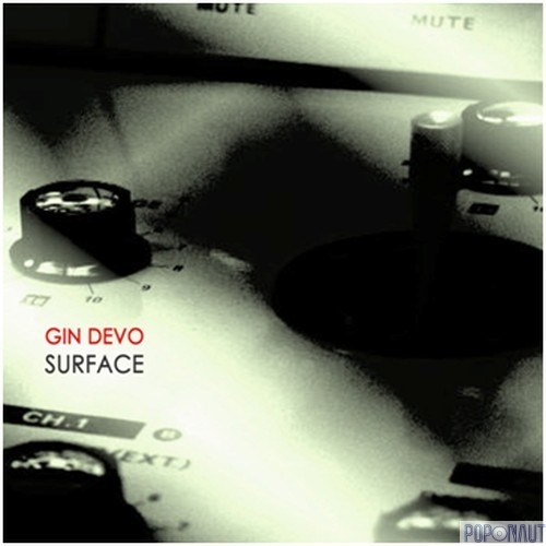 20/01/2012 : GIN DEVO - Surface [169/500]