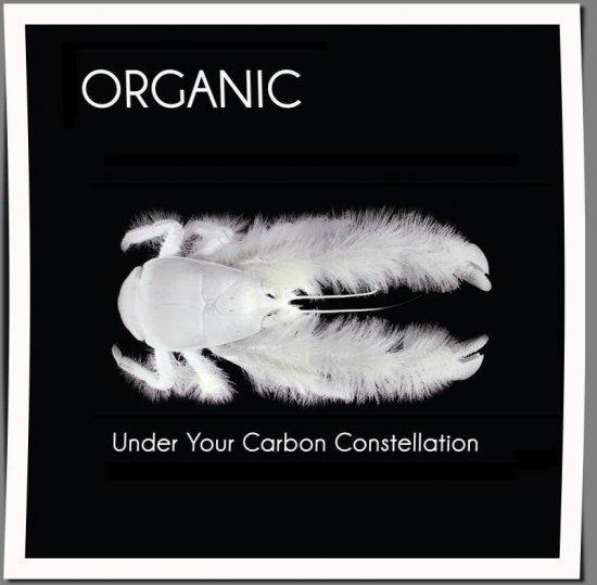 25/09/2012 : ORGANIC - Graham Coxon + Organic