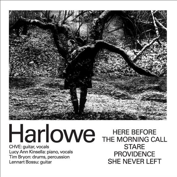 19/01/2016 : HARLOWE - Harlowe