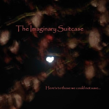 06/12/2012 : THE IMAGINARY SUITCASE - Here's to those we could not save