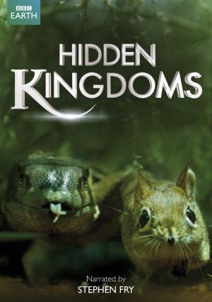 05/06/2014 :  - HIDDEN KINGDOMS